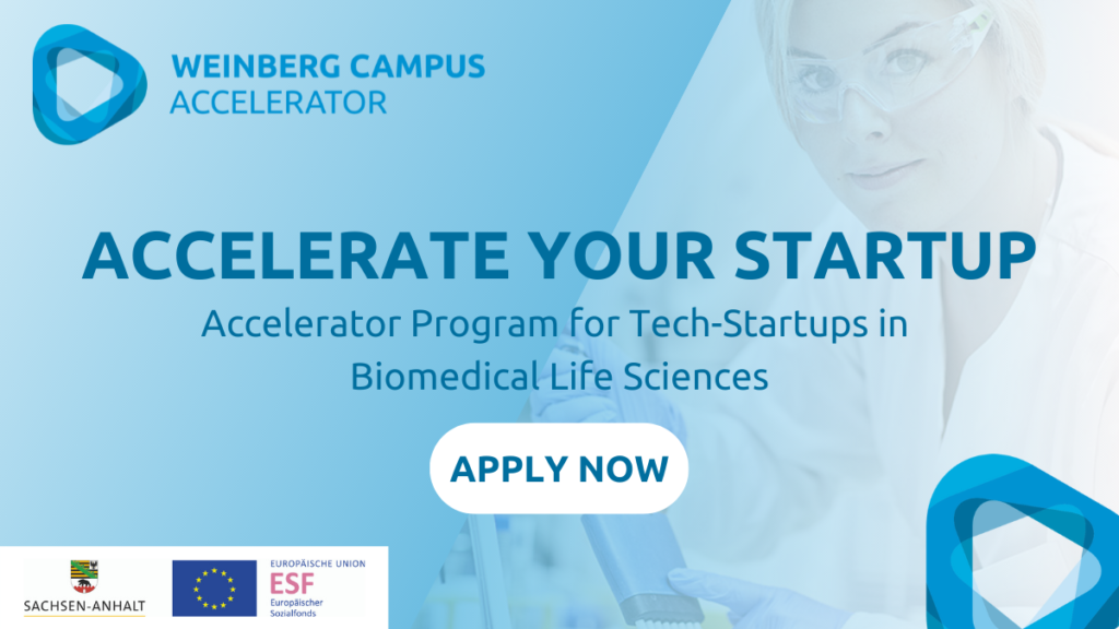 Application call for the Startup Accelerator